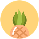 food, summer, vacation, tropical, pineapple Khaki icon