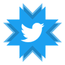 twitter, tweet, microblogging DodgerBlue icon