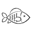 fish, Camping Black icon