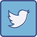 twitter, Metro, outline SkyBlue icon