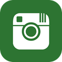 media, online, share, Business, Social, Instagram ForestGreen icon