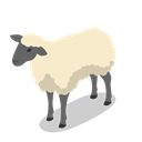 Farm, rural, Animal, Sheep, Animals Black icon