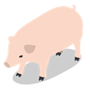 Animal, pig, Animals, Farm, rural Bisque icon