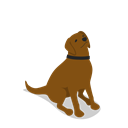 Animal, dog, Animals, Farm, sitting, rural Black icon