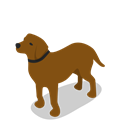Animal, dog, Animals, Farm, rural Black icon