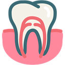 gums tooth, gum, dental treatment, root canal, Dentist, tooth, dental LightCoral icon