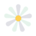 floral, spring, easter, chamomile, blossom, Flower, Bloom Black icon