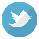 Logo, twitter, bird, website, Account, tweets, short messages MediumTurquoise icon