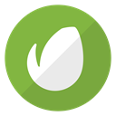 website, Envato, media, Logo, Social YellowGreen icon