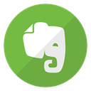 Logo, Evernote, website OliveDrab icon