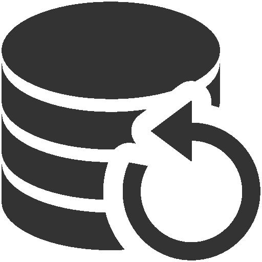 Data, backup icon