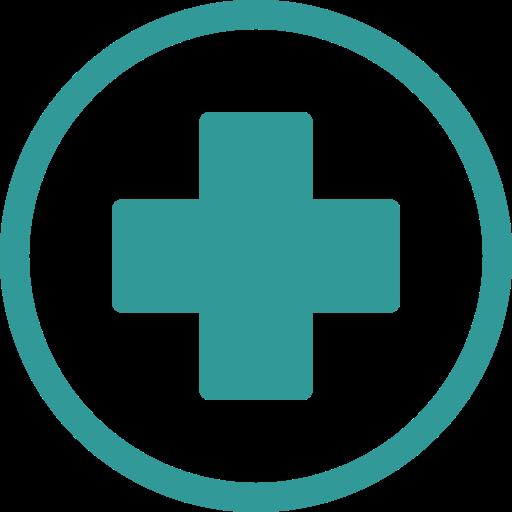 Ambulance Hospital Cross Icon
