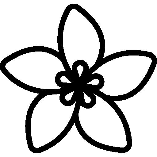Jasmine Flower Botanical Blossom Nature Petals Icon