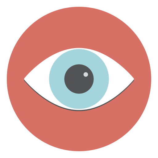 human eye view search eye icon