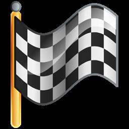 Checkered Flag Goal Icon