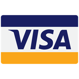 Visa Financial Checkout Finance Buy Pay Business Payment Card Donation Cash Credit Icon