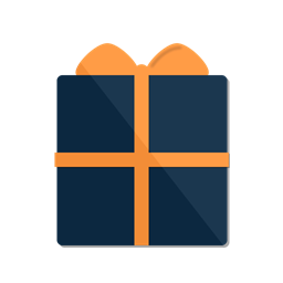Package Christmas Present Box Gift Icon