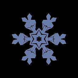 Flake Snow Icon