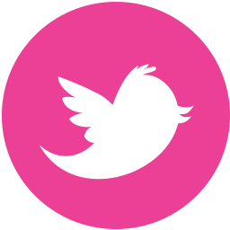 Media Twitter Social Pink Round Icon