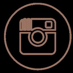Social Circles Media Instagram Pictures Neon Line Icon