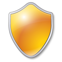 Guard Yellow Shield Security Protect Icon