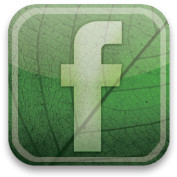 Image result for green facebook icon