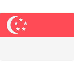 World Flag Singapore Flags Country Nation Icon