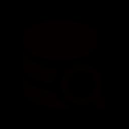 Search Data Storage Icon